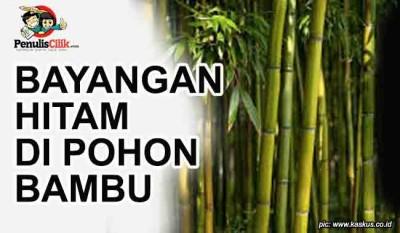 Bayangan Hitam Di Pohon Bambu