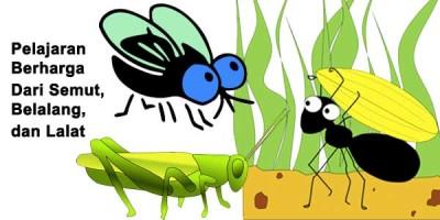 Pelajaran Berharga Dari Semut, Belalang, dan Lalat