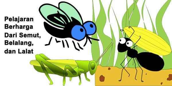 Pelajaran Berharga Dari Semut Belalang Dan Lalat Penulis Cilik