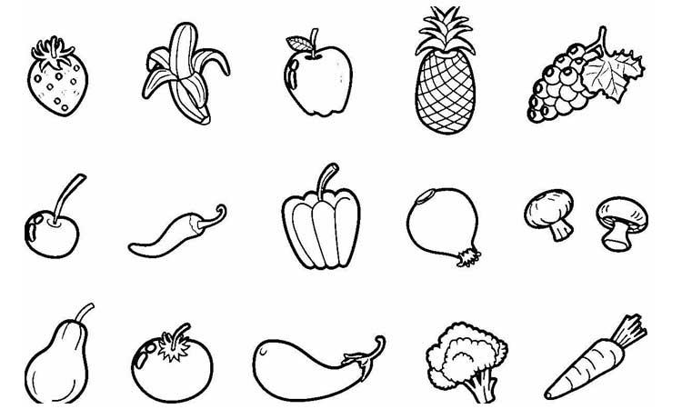 [Paling disuka] Gambar Mewarnai Sayur