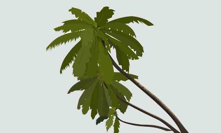 Latihan Melengkapi Deskripsi Pohon Pohonan Dalam Suasana Hujan