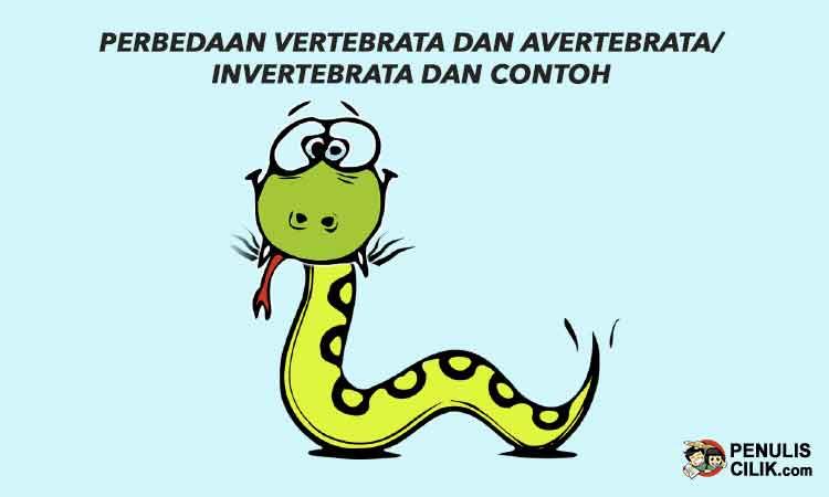 Perbedaan Vertebrata Dan Avertebrata Invertebrata Dan Contoh Jelaskan Penulis Cilik