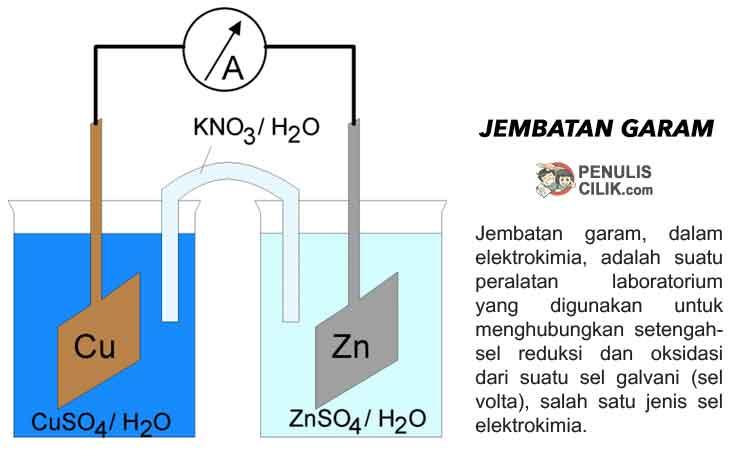 Perbedaan Sel Volta Dan Sel Elektrolisis Jelaskan Penulis Cilik