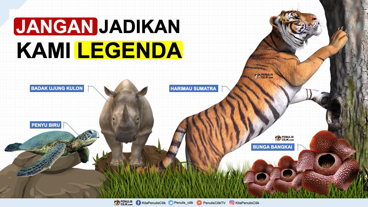 Contoh Poster Pelestarian Hewan Dan Tumbuhan Download Penulis Cilik